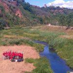 ecologia_voluntariado_acropolis-150×150