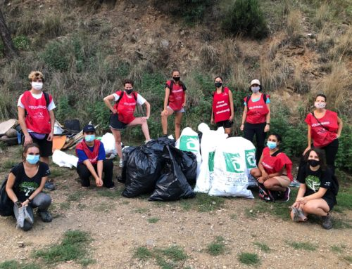 Nova Acròpolis participa en la jornada Let's Clean Up Europe