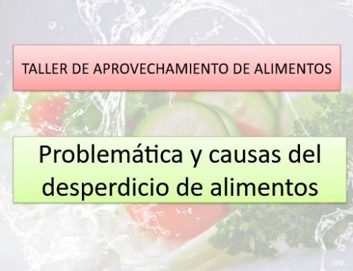 Taller de aprovechamiento de alimentos en Nova Acròpolis Barcelona