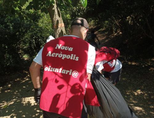 Voluntaris de Nova Acròpolis participen en la 8a edició del Let 's Clean Up! al parc de Collserola